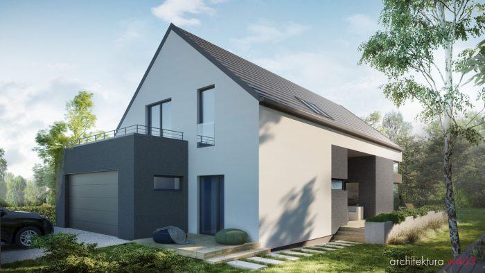 dom-jednorodzinny-wizualizacja